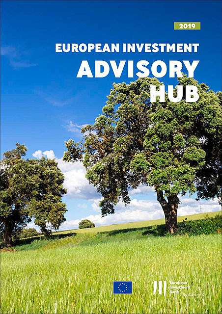 European Investment Bank Annual Report 2019 on the European Investment Advisory Hub, European Investment Bank