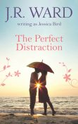 The Perfect Distraction, J.R. Ward