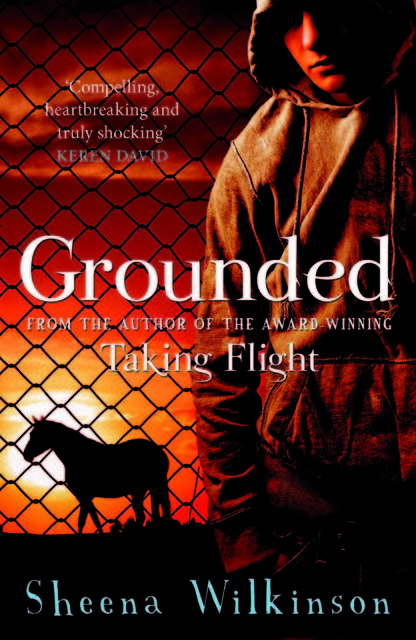 Grounded, Sheena Wilkinson