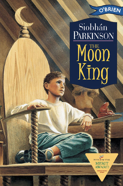 The Moon King, Siobhan Parkinson