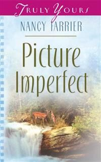 Picture Imperfect, Nancy J. Farrier