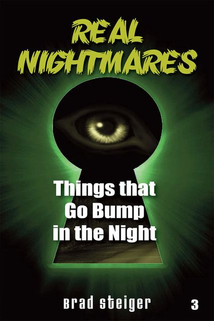 Real Nightmares (Book 3), Brad Steiger