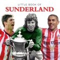 Little Book of Sunderland, Rob Mason