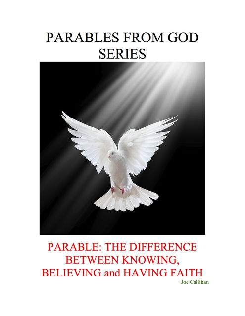 Parables from God Series – Parable: The Difference Between Knowing, Believing, and Having Faith, Joe Callihan
