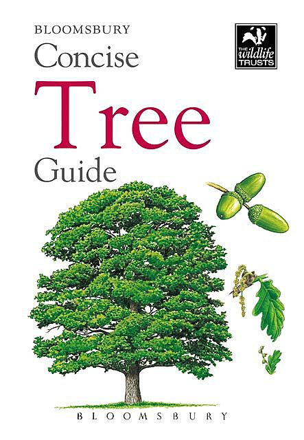 Concise Tree Guide, Bloomsbury Publishing