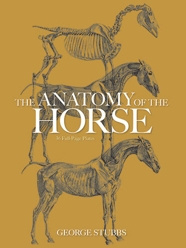 The Anatomy of the Horse, George Stubbs