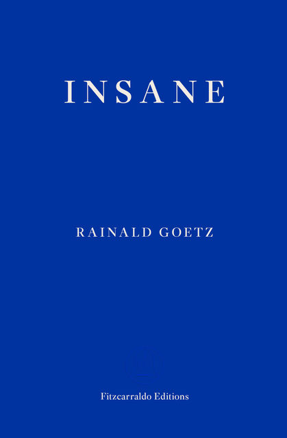 Insane, Rainald Goetz