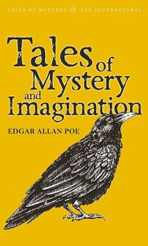 Tales of Mystery and Imagination, David Stuart Davies, Edgar Allan Poe