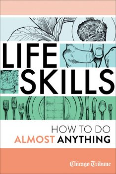 Life Skills: How To Do Almost Anything, Agate Digital