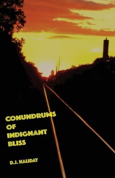 Conundrums of Indignant Bliss, D.J. Haliday