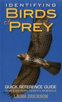 Identifying Birds of Prey, Laura Erickson