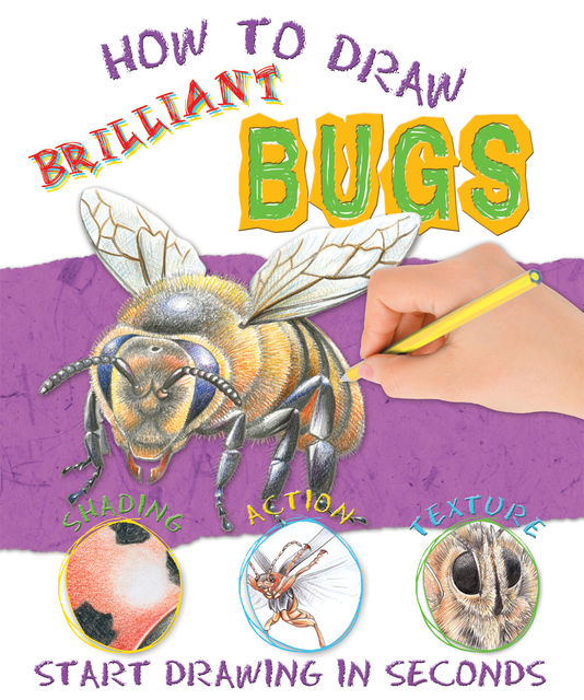 How to Draw Bugs, Miles Kelly