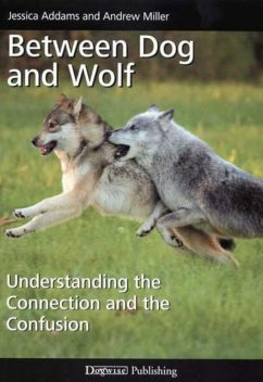 BETWEEN DOG AND WOLF, Andrew Miller, Jessica Addams