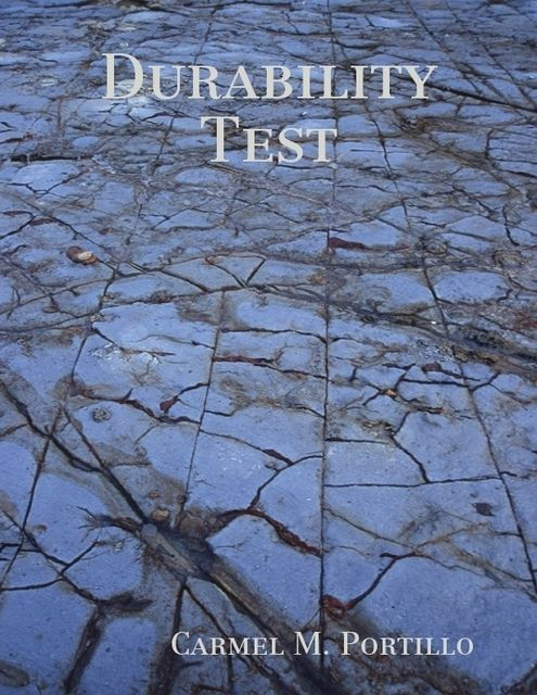 Durability Test, Carmel M.Portillo