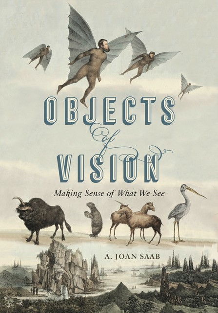 Objects of Vision, A. Joan Saab