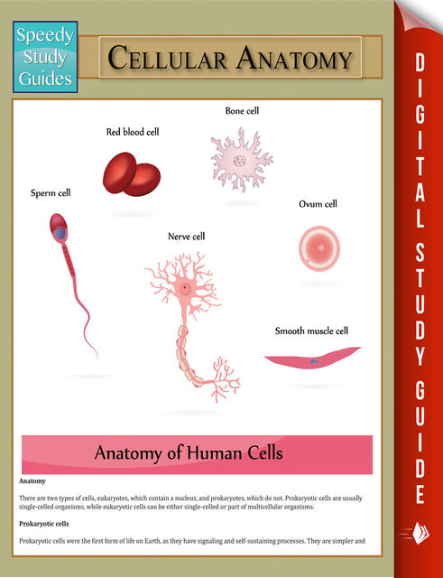 Cellular Anatomy, Speedy Publishing