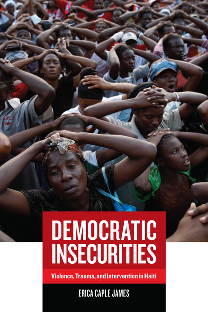 Democratic Insecurities, Erica James