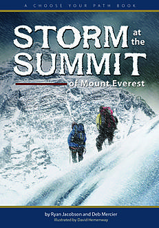 Storm at the Summit of Mount Everest, Ryan Jacobson, Deb Mercier