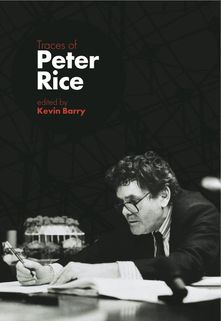 Traces of Peter Rice, Kevin Barry