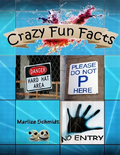 Crazy Fun Facts, Marlize Schmidt