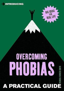Introducing Phobias: A Practical Guide, Patricia Furness-Smith