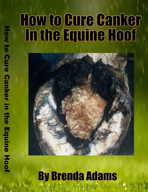 How to Cure Canker in the Equine Hoof, Brenda Adams