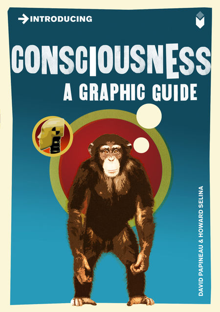 Introducing Consciousness, David Papineau