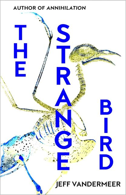The Strange Bird, Jeff Vandermeer