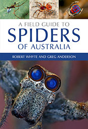 A Field Guide to Spiders of Australia, Greg Anderson, Robert Whyte
