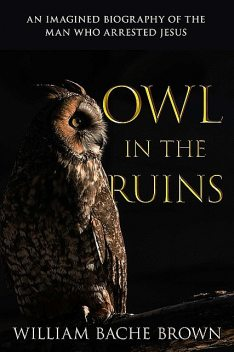 Owl in the Ruins, William Brown