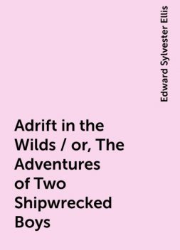 Adrift in the Wilds / or, The Adventures of Two Shipwrecked Boys, Edward Sylvester Ellis