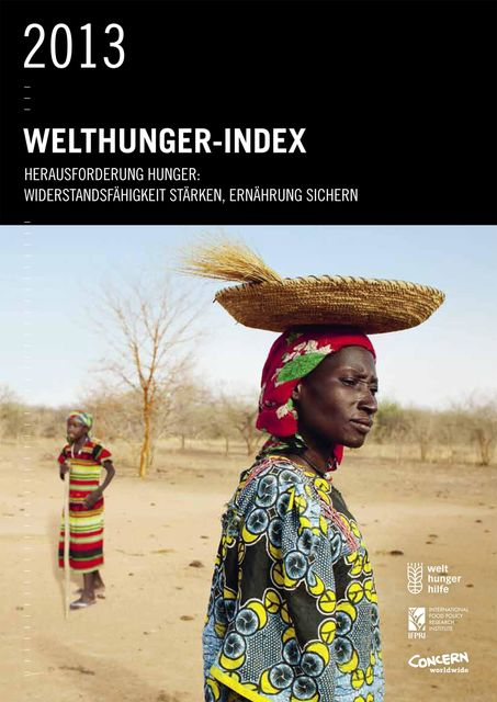 Welthunger-Index 2013, Bettina Iseli, Christophe Béné, Connell Foley, Constanze von Oppeln, Derek Headey, Doris Wiesmann, Heidi Fritschel, Klaus Grebmer, Lawrence Haddad, Sandra Yin, Tolulope Olofinbiyi