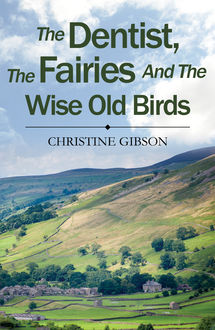 The Dentist, The Fairies and The Wise Old Birds, Christine Gibson