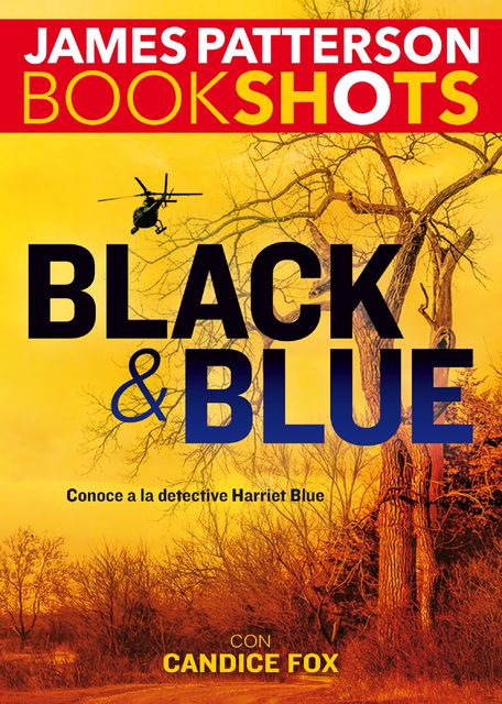 Black y Blue, James Patterson