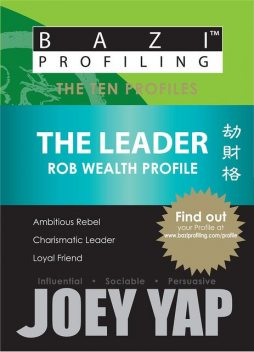 The Ten Profiles – The Leader (Rob Wealth Profile), Yap Joey