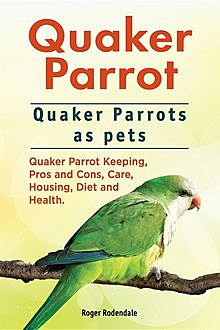Quaker Parrot. Quaker Parrots as pets. Quaker Parrot Keeping, Pros and Cons, Care, Housing, Diet and Health, Roger Rodendale