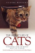 The Secret Life of Cats, Claire Bessant