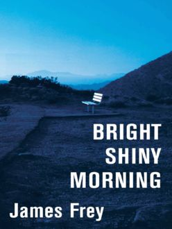 Bright Shiny Morning, James Frey