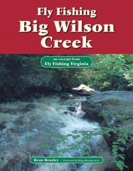 Fly Fishing Big Wilson Creek, Beau Beasley