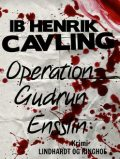 Operation Gudrun Ensslin, Ib Henrik Cavling