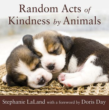 Random Acts of Kindness by Animals, Stephanie LaLand