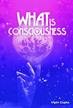 What Is Consciousness, Vipin Gupta