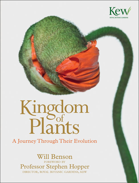 Kingdom of Plants: A Journey Through Their Evolution, Will Benson