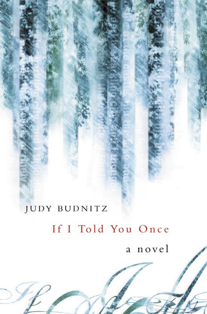 If I Told You Once, Judy Budnitz