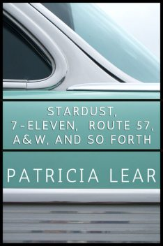 Stardust, 7-Eleven, Route 57, A&W, and So Forth, Patricia Lear