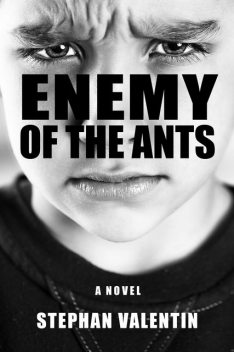 Enemy of the Ants, Stephan Valentin