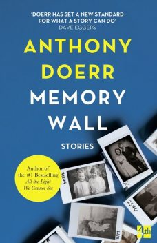 Memory Wall, Anthony Doerr