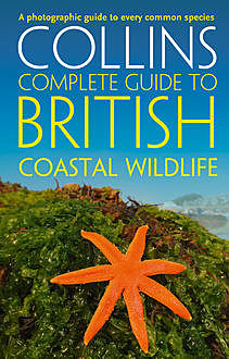 British Coastal Wildlife (Collins Complete Guides), Andrew Cleave, Paul Sterry
