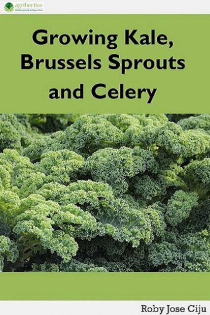 Growing Kale Leaves, Brussels Sprouts and Celery, Roby Jose Ciju