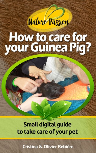 How to care for your Guinea Pig, Cristina Rebiere, Olivier Rebiere